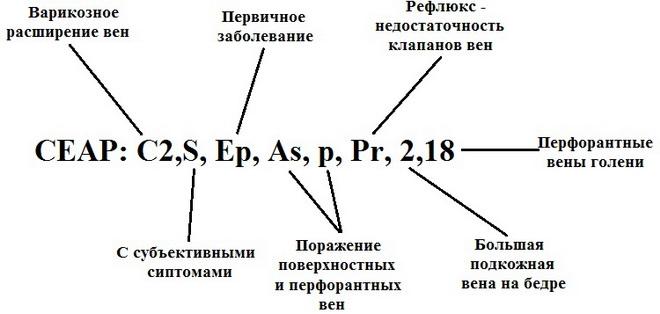 Классификатор CEAP