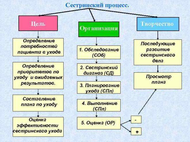 План ухода за пациентом с варикозной болезнью